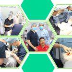 cấy ghép implant tiêu chuẩn quốc tế